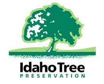 Tree Service Boise | Tree Stump Removal Boise | Tree Trimming Boise